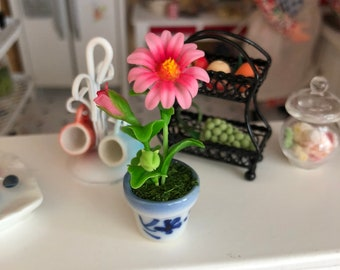 Miniature Gerber Daisy in Blue and White Ceramic Flower Pot, Dollhouse Miniature, 1:12 Scale, Miniature Flower, Home & Garden Decor