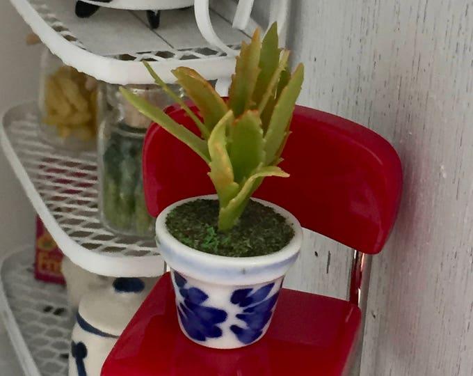 Miniature Christmas Cactus in Ceramic Blue and White Flower Pot, Dollhouse Miniature, 1:12 Scale, Dollhouse Accessory, Decor, Mini Plant