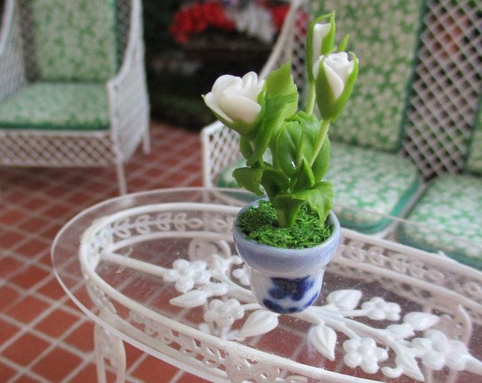 Miniature Roses, Mini White Rose Bush in Blue and White Ceramic Flower Pot, Style #69, Dollhouse Miniature, 1:12 Scale, Dollhouse Decor