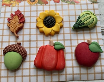 "Fall Buttons, ""Harvest Happenings"" by Buttons Galore, Style FA101, Carded set of 6, Shank Back Buttons, Pumpkin, Squash, Acorn, Apple & More"
