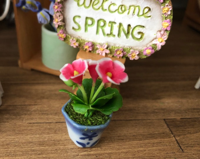 Miniature Dianthus in Blue and White Ceramic Flower Pot, Dollhouse Flower, Dollhouse Miniature, 1:12 Scale, Home & Garden Decor