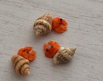 Miniature Hermit Crabs, Set of 3, Dollhouse Pets, Dollhouse Miniature, 1:12 Scale, Dollhouse Pet, Mini Bird, Dollhouse Accessory, Crafts