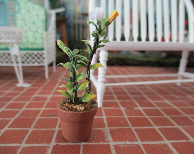 Miniature Plant, Mini Realistic Plant With Buds In Terra Cotta Clay Look Flower Pot, Style #43, Dollhouse Miniature, 1:12 Scale