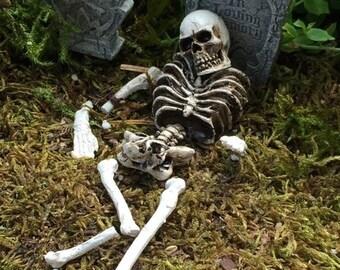 "SALE Miniature Skull and Skeleton Bones, 9 Piece Set, ""Bag of Bones"" Fairy Garden Accessory, Garden Decor, Halloween Decor"