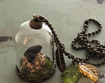 SALE Glass Pendant Necklace With Mini Bird, Nest and Eggs. Style JF8-1, Nest Under Glass Necklace, Includes Charms and Chain, Gift, Topper
