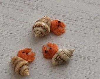 SALE Miniature Hermit Crabs, Set of 3, Dollhouse Pets, Dollhouse Miniature, 1:12 Scale, Dollhouse Pet, Mini Bird, Dollhouse Accessory, Craft