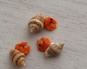 SALE Miniature Hermit Crabs, Set of 3, Dollhouse Pets, Dollhouse Miniature, 1:12 Scale, Dollhouse Pet, Mini Bird, Dollhouse Accessory, Craft