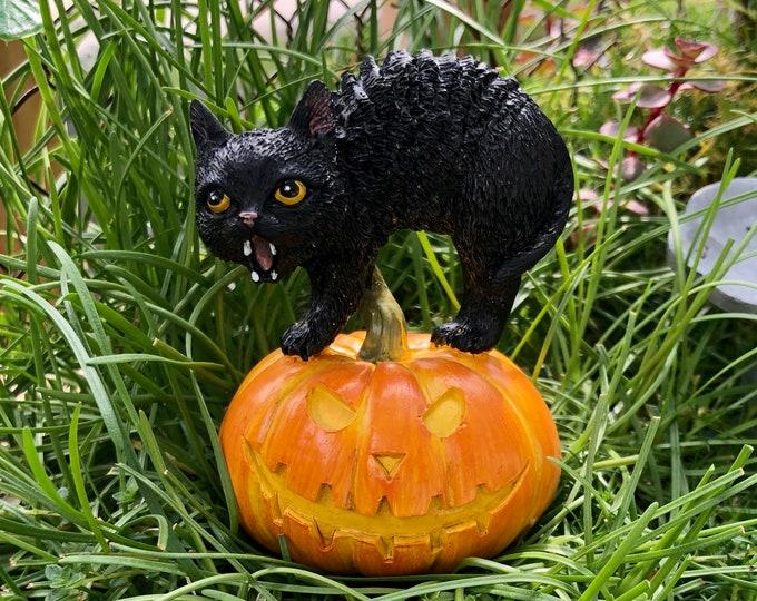 Black Cat and Jack O Lantern Pumpkin Figurine, Fairy Garden Miniature Garden Decor, Accessory, Topper, Halloween Decor