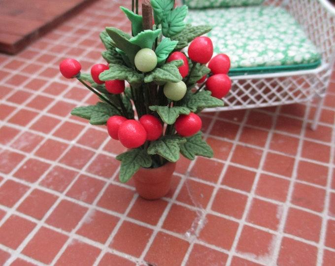 Miniature Plant, Mini Tomato Plant In Clay Look Flower Pot, Style #75, Dollhouse Miniature, 1:12 Scale, Dollhouse Accessory, Decor