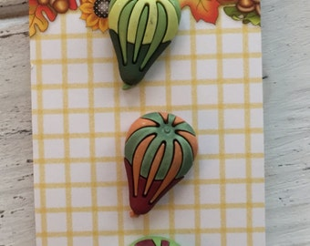 Gourd Buttons, Fall Themed Buttons by Buttons Galore, Carded Set of 3 Shank Back Buttons, Sewing, Crafting Embellishments, Fall Buttons