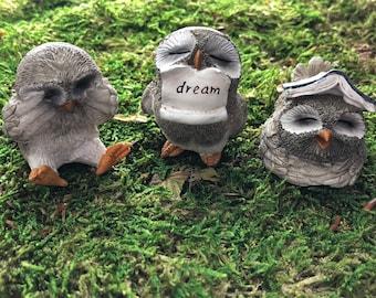 Little Owls, Owl Figurines, With Book, With Dream Sign, 3 Piece Set, Home & Garden Decor, Fairy Garden Accessory, Topper, Shelf Sitter, Gift