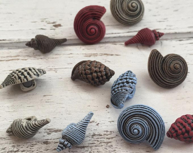 """Seashell Buttons, Packaged Novelty Buttons, """"Seashells"""" by Buttons Galore Style 4262, Packaged Button Assortment, Embellishments, Beach, Sea"""