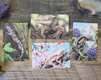 Four Gecko Art Post Cards - Crested Velvet White Lilly Reptile Lizard Art Postcards