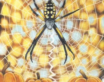 Autumn in the Air - Yellow Orb Weaver Garden Spider with Pumpkins - 8 x 10 Fine Art Print - By Laura Airey Le - Argiope aurantia