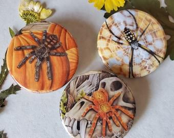 Halloween Tarantula Spider Button Trio - 1.75 inch Hand Pressed Metal Buttons Featuring Original Artwork - OBT Baboon Garden Orb Weaver Gift