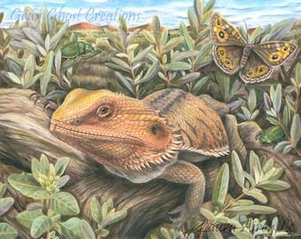 Australian Dragon - Fine Art Print - By Laura Airey Le - Reptile Art Bearded Dragon Lizard Butterfly Native Wildlife Beetle