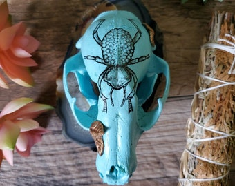 Custom Inked blue feigning death beetle Drawing Real Beautiful Raccoon Skull - Animal Art Sculpted Leaves Metaphystical