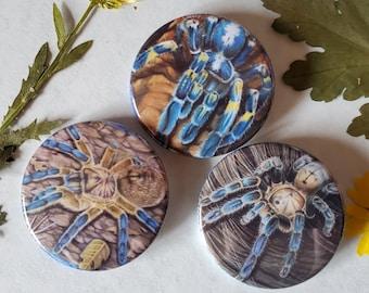 Blue Tarantula Button Trio - 1.75 inch Hand Pressed Metal Buttons Featuring Original Artwork - Metallica Baboon Colbalt Spider Gift