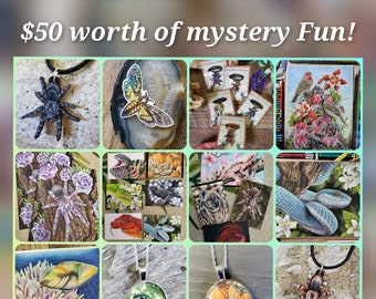 MYSTERY BOX - 50 Dollars worth of Items for 40 Dollars - Art Prints Stickers Magnets Nature Wildlife Gecko Spider Wolf Bug Artwork