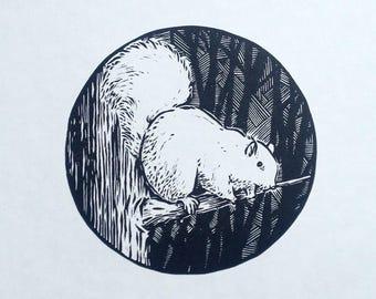 Squirrel linocut print