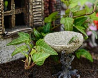 "Frog in the Bird Bath 2.5"" for the Fairy Garden"