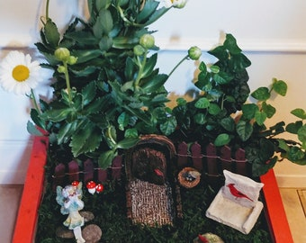 Cardinal Fairy Garden Kit - (Plants and Soil not included)