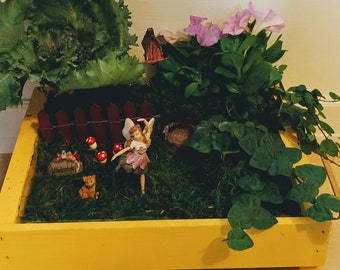Fairy Sophia Fairy Garden Kit - (Plants and Soil not included)