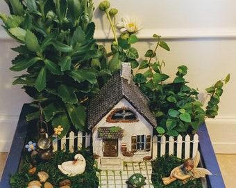 Hollybrook House Fairy Charlotte Fairy Garden Kit - (Plants and Soil not incl.)