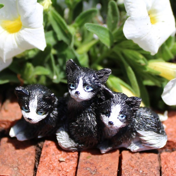 Excellent Oreos Pals 3 Black And White Kittens 1 0 Tall For The Fairy Garden Creativecarmelina Interior Chair Design Creativecarmelinacom