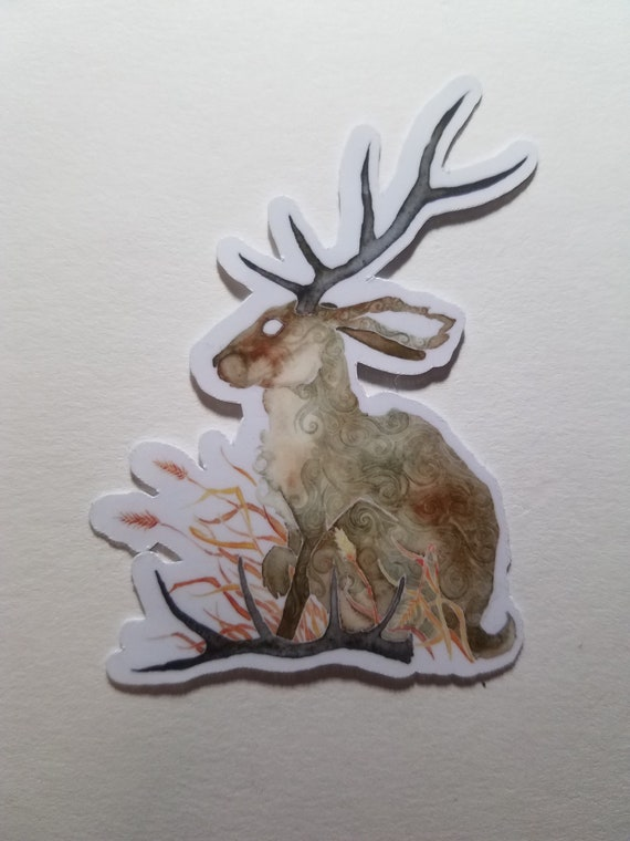 Shed Antler Sticker