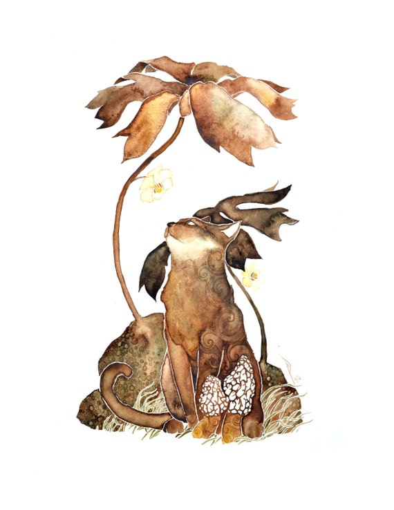Mushroom Hunter. giclee PRINT of original watercolor . by Pete Sandker