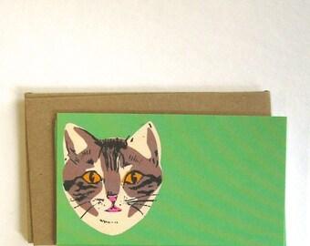 Green Cat Enclosure Note