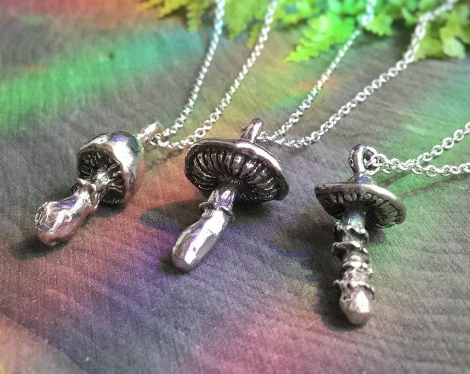 Mushroom necklace, Amanita Muscaria, Shaggy Cap, Mycology, Mycologist, Fungi