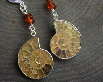 Ammonite Fossil earrings, with Genuine Amber beads
