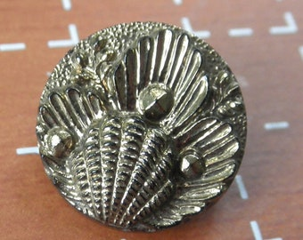 """Victorian Black Glass Shells and Pearls Button - 5/8"""" diameter - Gold Luster"""