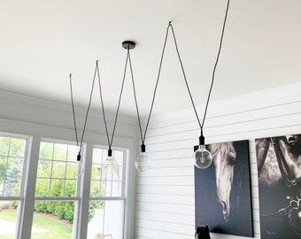 Hanging Pendant Lights and Chandelier