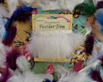 Feathers & Feather Trim for Craft Projects