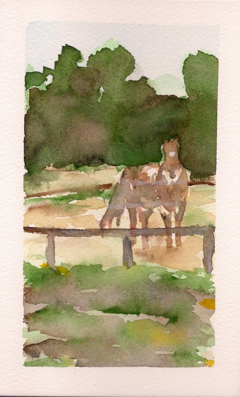 Horses Windmere Equestrian Center 5 of 6 PRINT image 0