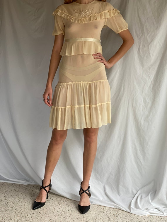 1930's Sheer Dress / Ethereal Garden Party Dress … - image 2