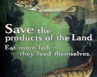 USDA fish Vintage image 8 x 10 local fish image print 8 x 10 reproduction WWI save the products of the land eat more fish