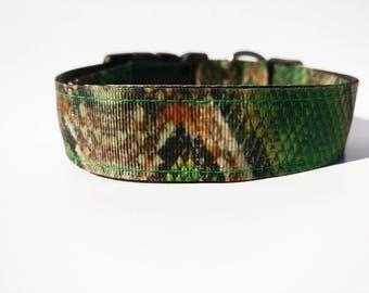 Snake Themed Dog Collar