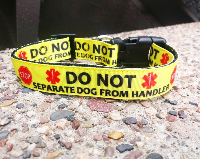 Featured listing image: Do Not Seperate Dog Collar
