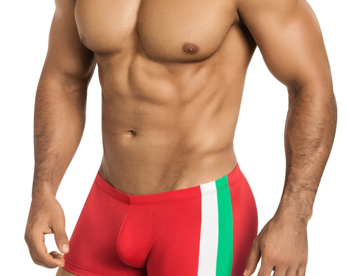 Men's 'Italian Flag' Squarecut Swimsuit in Red, Green, & White - 436-5