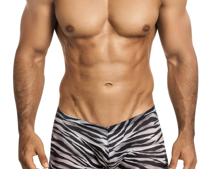 Men's Erotic Squarecut Underwear in Leightweight Zebra Print Mesh by Designer Vuthy Sim - 400-5