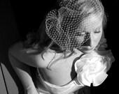 Elegant birdcage veil french netting blusher (ivory or white)