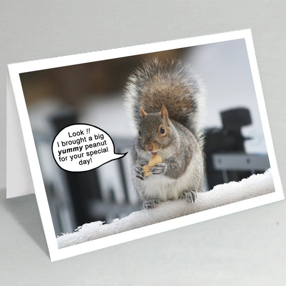 Funny Squirrel Greeting Card Birthday Card Cute Mothers Etsy