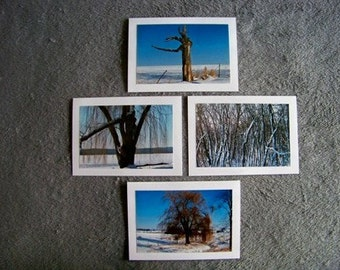 Winter Tree Medley-set of 4 blank notecards- online pics are blurry, real pics aren't