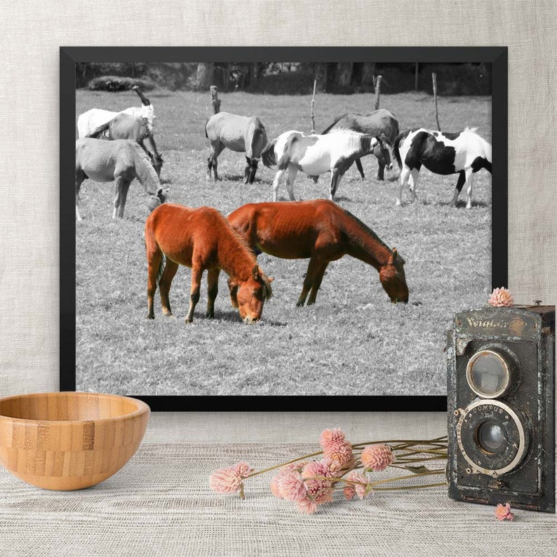 Horse Lover Selective Color Framed Print Gift for Horse image 0
