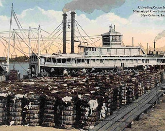 Beautiful Antique Linen Postcard of a Barge Load of Cotton on River Front in New Orleans Louisiana