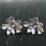 Tiny Cliff Stonecrop Rosette Posts -- Nature Cast Botanical Jewelry, Silver Succulent -- Ready to Ship